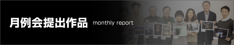 MonthlyReport